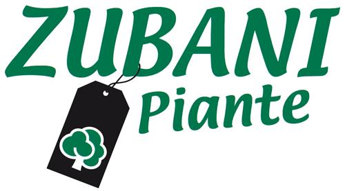 Zubani Piante | Vedita online piante e fiori | Vicinoacasa.shop